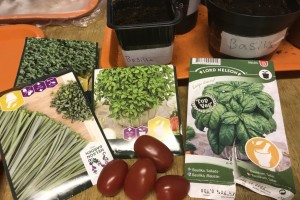 Örtlära - Vad kan man odla