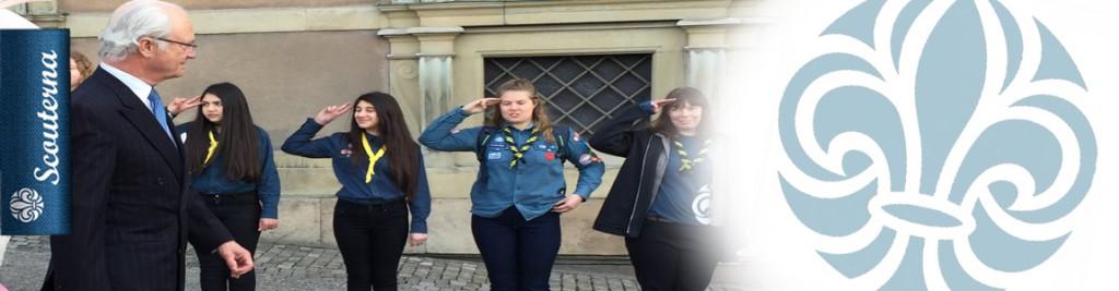 Banner_scouthalsning