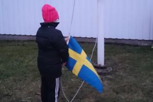 hissa flagga_spdan