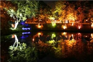 nossanljusfestival
